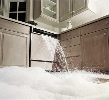 dishwasher leaks overflowing in Kissimmee emergency plumber | leak